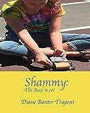 Car Shammies