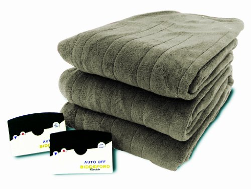 Biddeford Micro Plush Electric Heated Blanket with Digital Controller, Queen, Sage
