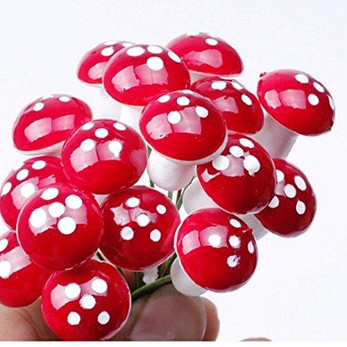 Hunpta 50 PC Mini Champignon Rouge Jardin Petite à pois en pot DIY jouet Maison Paysage bonsaï Plante Décoration de jardin Red