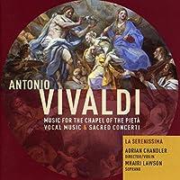 Concerto for Violin Strings & Continuo