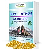 Thymus Glandular Supplement Raw Tissue Extract - Supports Immune Allergy Histamine Health - Healing Drops Soft Gels with Harbor Seal Thymus Gland