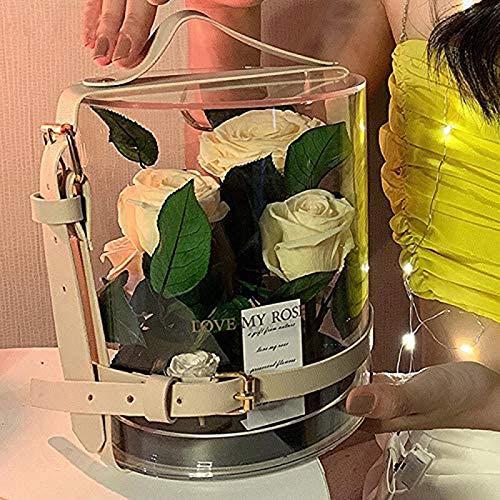 HYDDG Caja de regalo de jardín secreto de la rosa eterna transparente para padres San Valentín regalo de cumpleaños