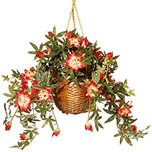 """CC Christmas Decor 13"""" Hanging Artificial Red and White Amaryllis Flower in Basket"""
