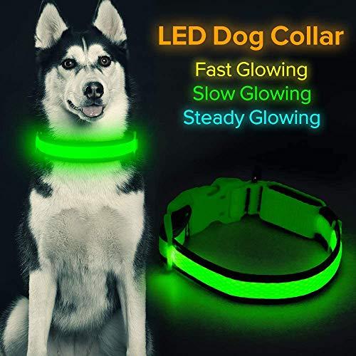 Collar de perro LED Micro USB recargable con luz brillante para mascotas, cómodo y suave malla de seguridad para perros pequeños, medianos y grandes (S, verde)