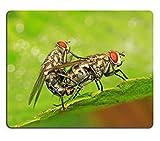 luxlady Gaming Mousepad imagen ID: 29864998Dos muscidae insectos apareamiento en la hoja verde en el Wild