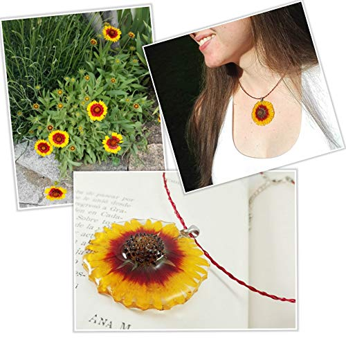 Botania Jewelry