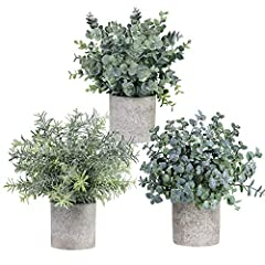 "Quantity: Package includes 3 Mini Artificial Potted Plants. Each small Eucalyptus and Rosemary Greenery Plant comes already set in its own paper pulp pot for easy displaying. Dimensions: The Artificial Potted Herbs measure appr. 9"" to 10"" tall, from ..."
