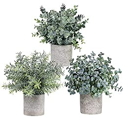 Set of 3 Mini Potted Artificial Eucalyptus Plastic Plants For Home Decor