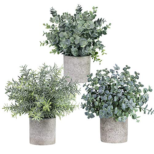 Winlyn Set of 3 Mini Potted Artificial Eucalyptus Plants Plastic Fake Green Rosemary Plant for Home...