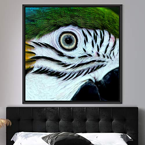 "bestdeal depot Bird CloseUp Framed Canvas Wall Art Prints for Living Room,Bedroom Framed Artwork Decoration Ready to Hang - 16""x16"" inches"