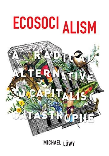 Ecosocialism: A Radical Alternative to Capitalist Catastrophe (English Edition)
