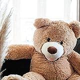 oso de peluche