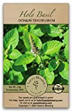 Gaea's Blessing Seeds - Holy Basil Seeds -...