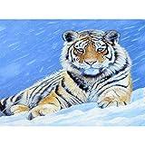 Lazodaer Kits de pintura de diamante para adultos, niños, decoración de oficina, casa regalos para ella, tigre en la nieve, 15.7 x 11.8 pulgadas