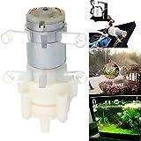 Fachmann Wasserspender WS Mini12v Priming...