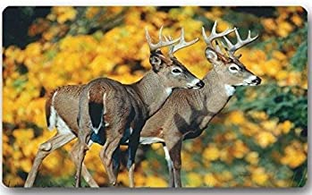 ZMvise Rubber Top Fabric Non-Slip Rubber Indoor Outdoor Doormat Door Mats Deer Animal Floor Mat Rug for Home Office Bedroo...