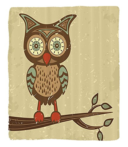 Chaoran 1 Fleece Blanket on Amazon Super Silky Soft All Season Super Plush Owls Home Decor etCute Owlitting on Branch Eyesight Animal Humor Pastel Retro Modern Graphic Accessories Extra Cream Red Teal