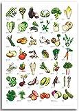 GEMÜSE Poster - illustriert von Linda Kowsky - DIN A2 aus