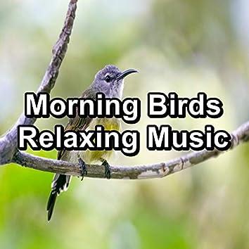 Morning Birds Relaxing Music