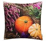 Brandsseller Garden Furniture Pillows