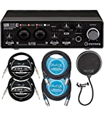 Steinberg UR22C 2x2 USB Audio Interface for Windows, Mac, iPad Bundle with Blucoil 2-Pack of 10-FT Balanced XLR Cables, 2-Pack of 10-FT Straight Instrument Cable (1/4in), and Pop Filter Windscreen