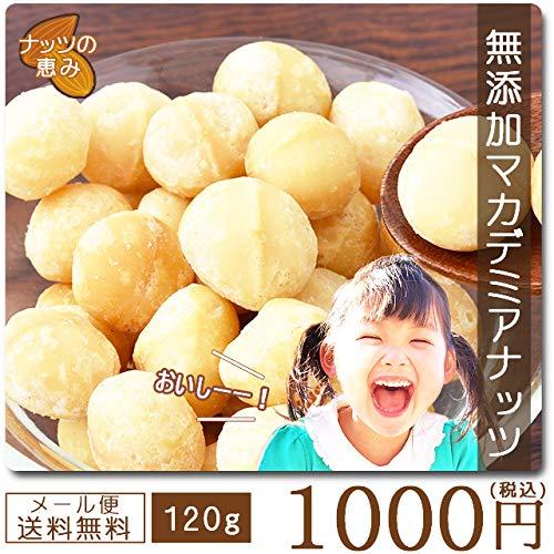 巌流庵 マカデミアナッツ120g 送料無料 マカダミアナッツ 塩味 有塩 大粒