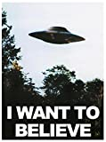 FABTEE Poster - I Want to Believe / 250g Papier