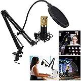 mit Frame Mic Kit, 78 dB Einzelkondensatormikrofon, für Aufnahmestudios für Radiosender