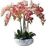 Decoración de la planta falsa Conjunto de arreglos de phalaenopsis de orquídea grande, orquídeas de imitación Bonsai para la oficina de la mesa de la decoración de la fiesta de la oficina Ornamento, n