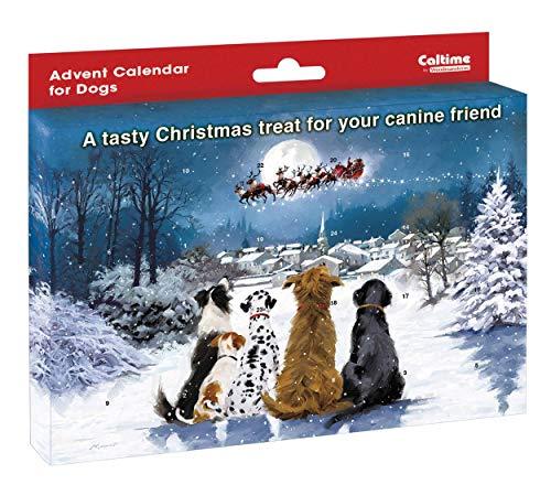 Woodmanstere Adventskalender voor uw hond