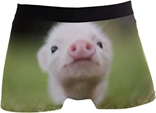 hengpai Cool Dogs Prints Men's Boxer Briefs Soft Underwear Covered Waistband Short Leg