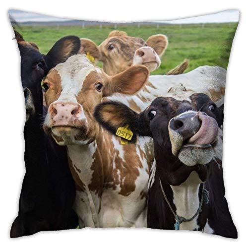 Funda de cojín Throw Cojín Throw Pillow Case Diferentes tipos de vacas Funda de Almohada 45X45CM