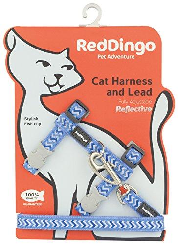Red Dingo Reflektierendes Leine/Geschirr für Katzen Ziggy hellblau