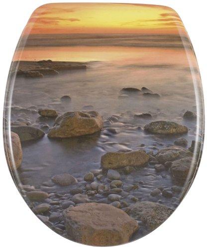 Wenko 17612100 Taza para Inodoro, Multicolor, 36,5 x 44,5 cm