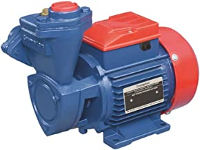 Crompton 1HP SP Mini Champ I Water Pump (Multicolour)