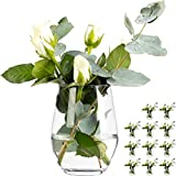 GIESSLE 12 Stück Elegante Vase Vasen Set Blumenvase aus Glas Tischvase Glasvase Dekovase Deko Väschen