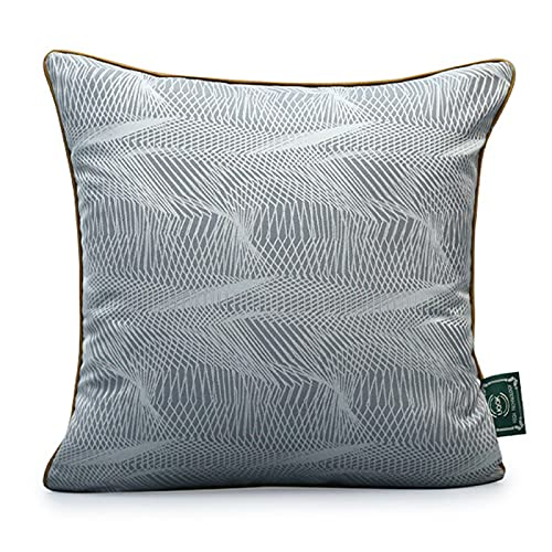 QXbecky Cojines Textura Gris, Estilo de Lujo Ligero, Alta precisión con Almohada Cuadrada de núcleo Interior, Accesorios de decoración de sofá Minimalistas Modernos de 45 cm