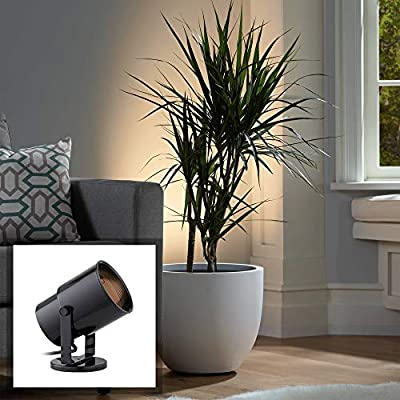 Black Cord-n-Plug Accent Uplight with Foot Switch - Pro Track
