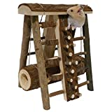 Rosewood Small Animal Activity Toy Activity Assault Course <span class='highlight'>Boredom</span> <span class='highlight'>Breaker</span>
