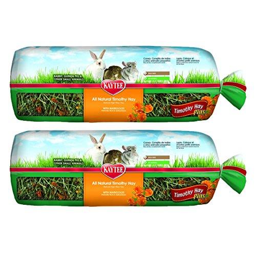 Kaytee Timothy Hay Plus Carrots Pet Treat, 48 oz
