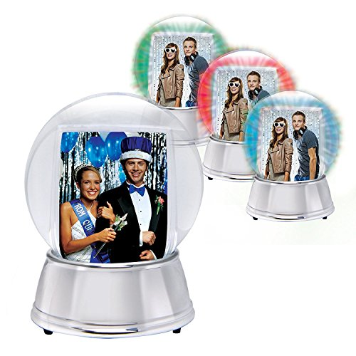 Neil Enterprises LED Light Up Photo Snow Globe (Silver, Large)