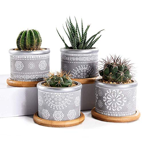 WOHAO Panier de Fleurs Suspendus Pots de Fleurs de Set 2.95Inch Cement Succulent Planteur Pots, Cactus Pot d'intérieur Plante Petit béton Herb Jardinière récipient avec Bamboo (Color : -)