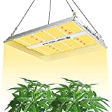 KingLED UL600 LED Grow Light 2x2ft...