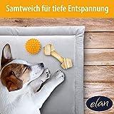 elan ® Hundekissen - hygienische & Bequeme Hundedecke - leicht zu reinigen und rutschfest – atmungsaktives Material - Ideal für unterwegs 70x50cm - 4
