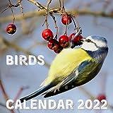 Birds Calendar 2022: September 2021 - December 2022 Monthly Planner Mini Calendar With Inspirational Quotes