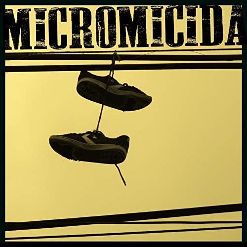 Micromicida