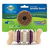 PetSafe Busy Buddy Bristle Bone Chew Toy for Dogs – Strong Chewers – Helps Clean Teeth – Small