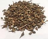 10000 Paquete Trident Arce semillas, Acer Buergerianum, US 2015 ideal para Bonsai