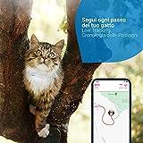 Zoom IMG-1 tractive gps cat tracker seguilo