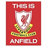 Liverpool FC Mini Poster This is Anfield 40 x 50 cm
